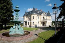 HA804 - Exklusive Schlossvilla mit Oldtimergaragen bei Hof in Oberfranken Bayern 5 / 14