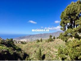 NH-21101 -  La Palma - Finca in Las Manchas 9 / 21